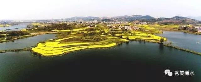 浠水农村房子风景