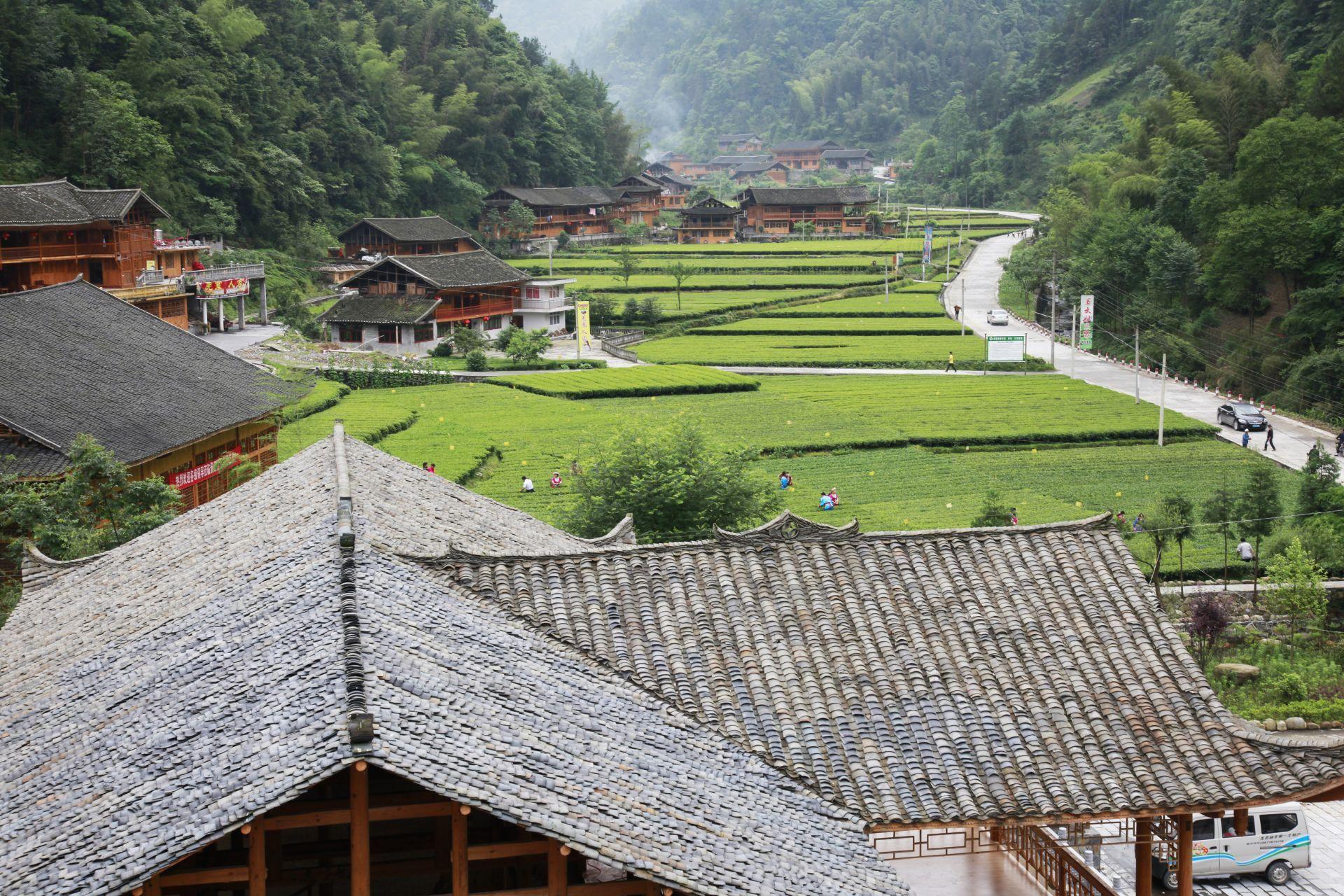 访地下迷宫 赏茶海姜寨 寻香格里拉